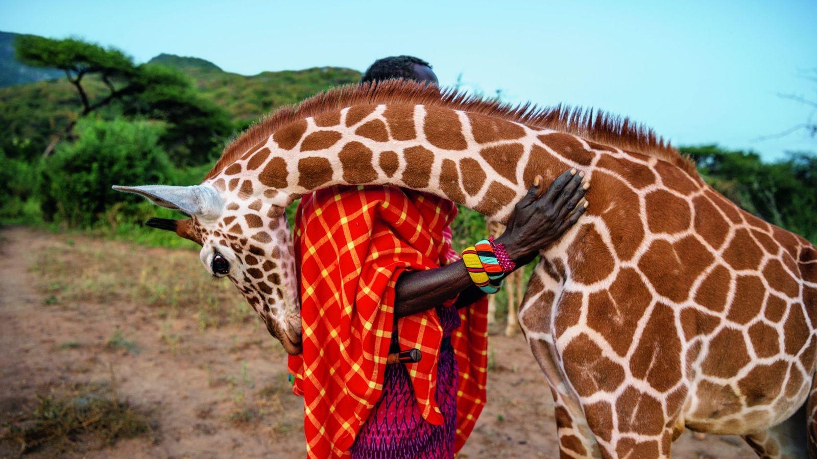 L'amour entre l'homme et l'animal - Tanzanie
