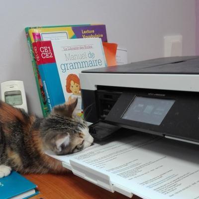 Olive répare l'imprimante !!!